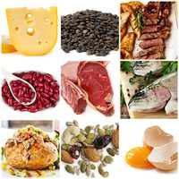 vidy-belkov-vred-belkovyh-diet.jpg